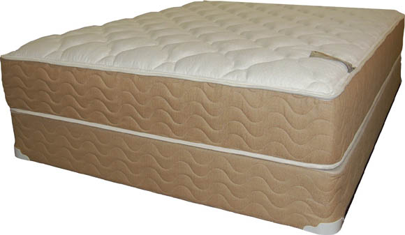 Michigan Mattress Store Mattress Foam Encased Special