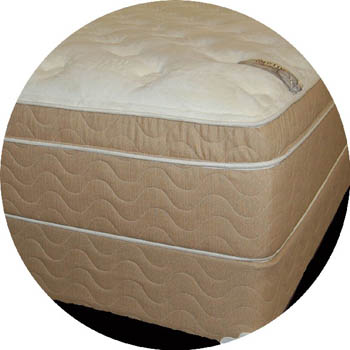 extra thick pillow top mattress in Detroit
