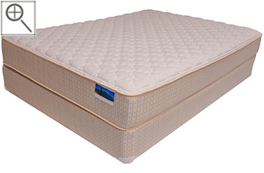 Davisburg Firm Affordable TruCool Mattress