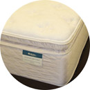 Stafford Pillow Top Mattress