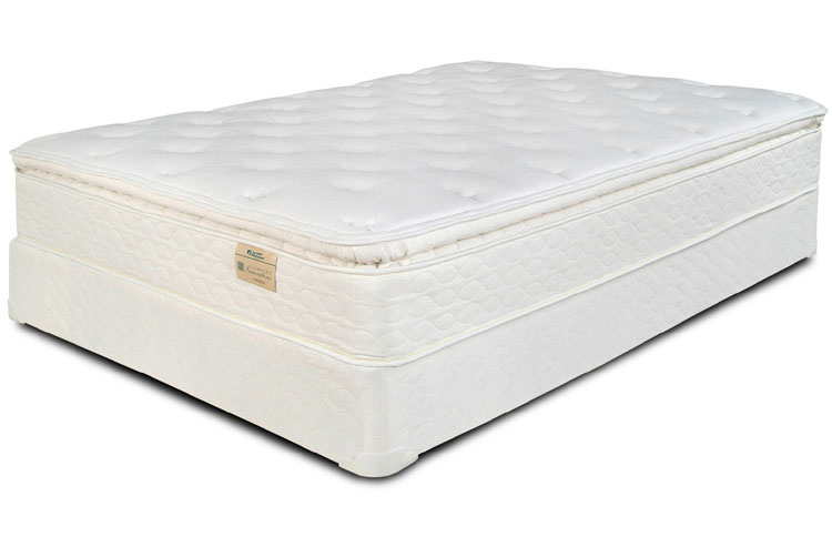 Michigan Discount Mattress Premium Pillowtop With Memory Foam